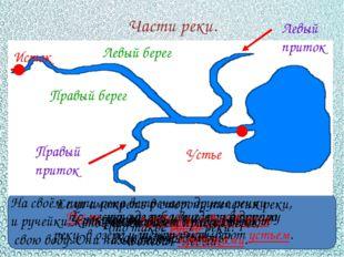 Части реки. Как называют начало реки? Исток Что такое устье реки? То место,
