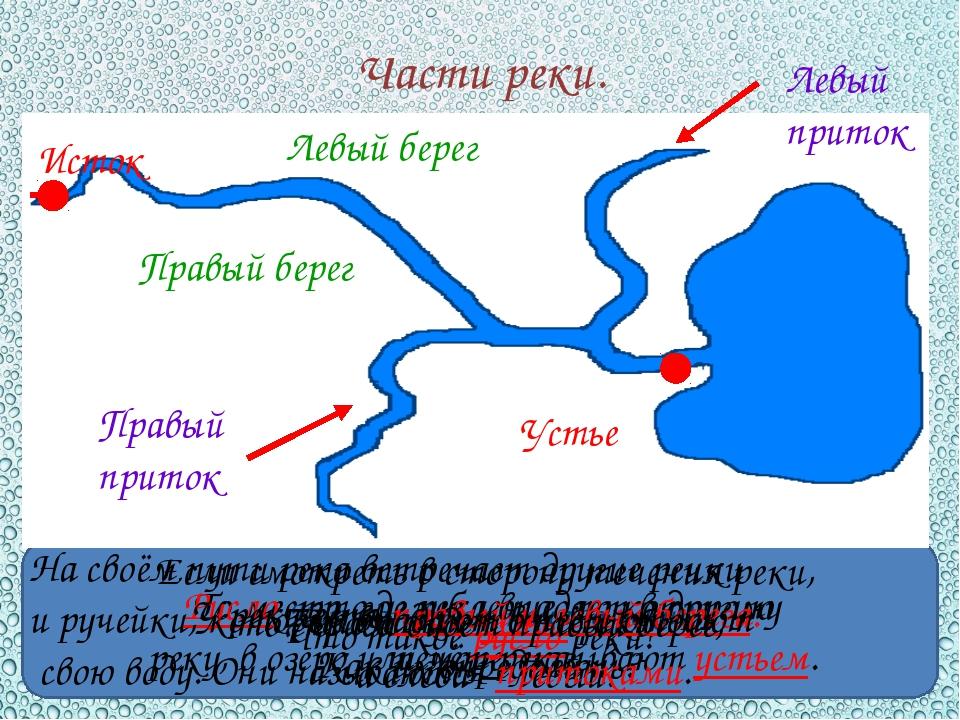 Части реки. Как называют начало реки? Исток Что такое устье реки? То место,...