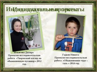 Ильясова Диляра Проектно-исследовательская работа «Творческий взгляд на обыкн