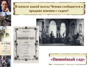 В начале какой пьесы Чехова сообщается о продаже имения с садом? «Вишнёвый сад»