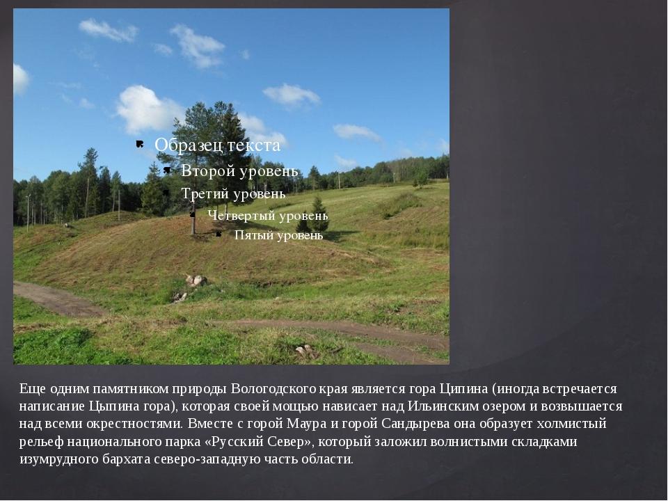 Еще одним памятником природы Вологодского края является гора Ципина (иногда в...
