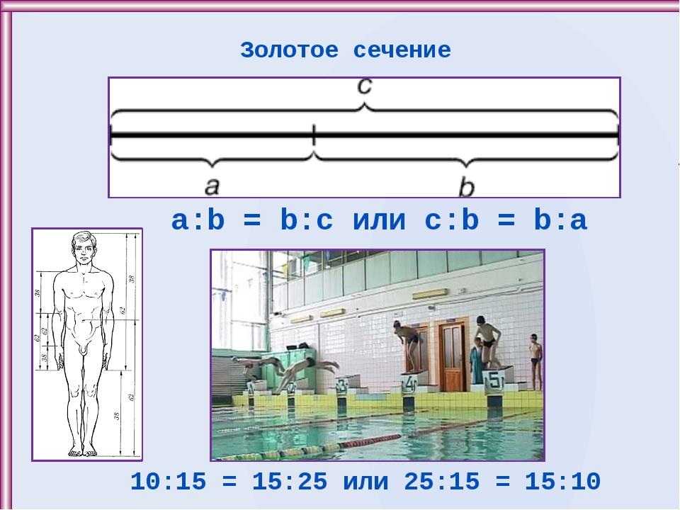 Золотое сечение a:b = b:c или c:b = b:a 10:15 = 15:25 или 25:15 = 15:10