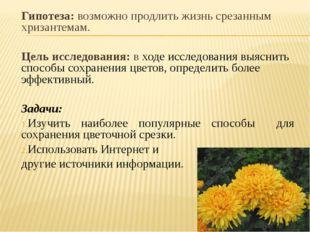 Гипотеза: возможно продлить жизнь срезанным хризантемам. Цель исследования: в