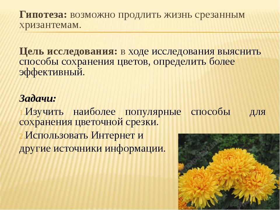 Гипотеза: возможно продлить жизнь срезанным хризантемам. Цель исследования: в...