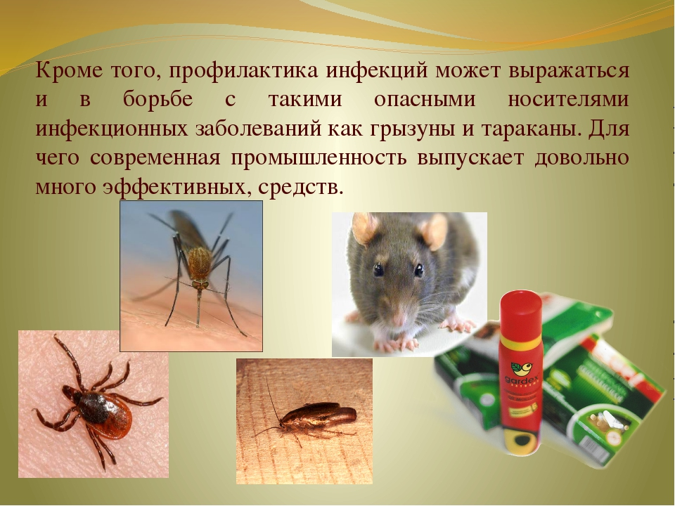Кроме того, профилактика инфекций может выражаться и в борьбе с такими опасны...