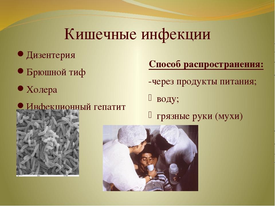 Кишечные инфекции Дизентерия Брюшной тиф Холера Инфекционный гепатит Способ р...