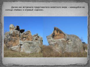 Далее нас встречали представители животного мира – нежащийся на солнце «Каба