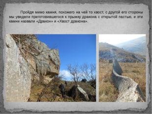 Пройдя мимо камня, похожего на чей то хвост, с другой его стороны мы увидели