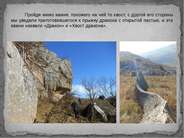 Пройдя мимо камня, похожего на чей то хвост, с другой его стороны мы увидели...