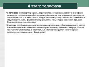 4 этап: телофаза В телофазе происходят процессы, обратные тем, которые наблюд