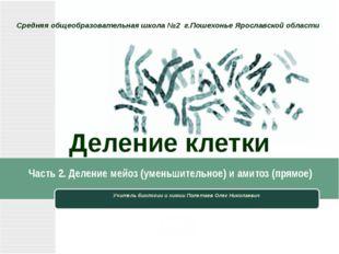 Деление клетки Учитель биологии и химии Полетаев Олег Николаевич Средняя обще
