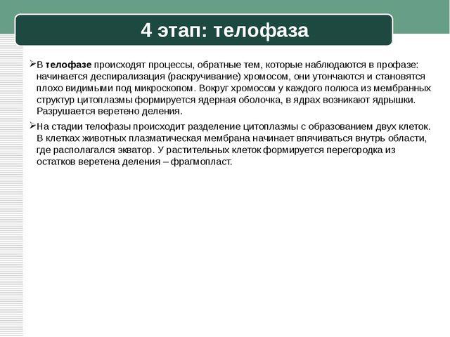 4 этап: телофаза В телофазе происходят процессы, обратные тем, которые наблюд...
