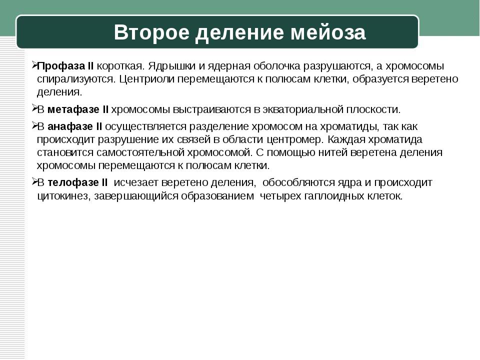 Второе деление мейоза Профаза II короткая. Ядрышки и ядерная оболочка разруша...