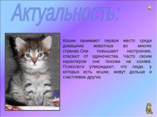 Кошки занимают первое место среди домашних животных во многих странах.Они пов