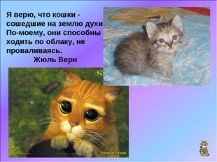 Я верю, что кошки - сошедшие на землю духи. По-моему, они способны ходить по