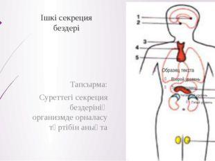 Ішкі секреция бездері Тапсырма: Суреттегі секреция бездерінің организмде орна