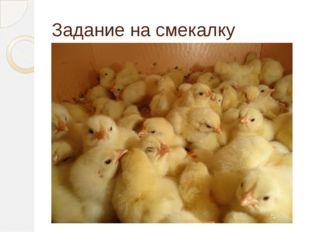 Задание на смекалку «Вылупившиеся цыплята беспомощны, они даже клевать сами н
