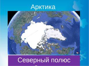 Арктика Северный полюс Земли