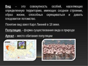 Вид – это совокупность особей, населяющих определенную территорию, имеющих сх
