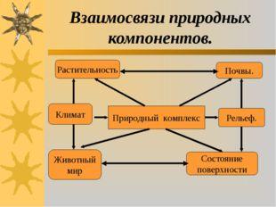 Взаимосвязи природных компонентов. Природный комплекс Почвы. Рельеф. Состояни