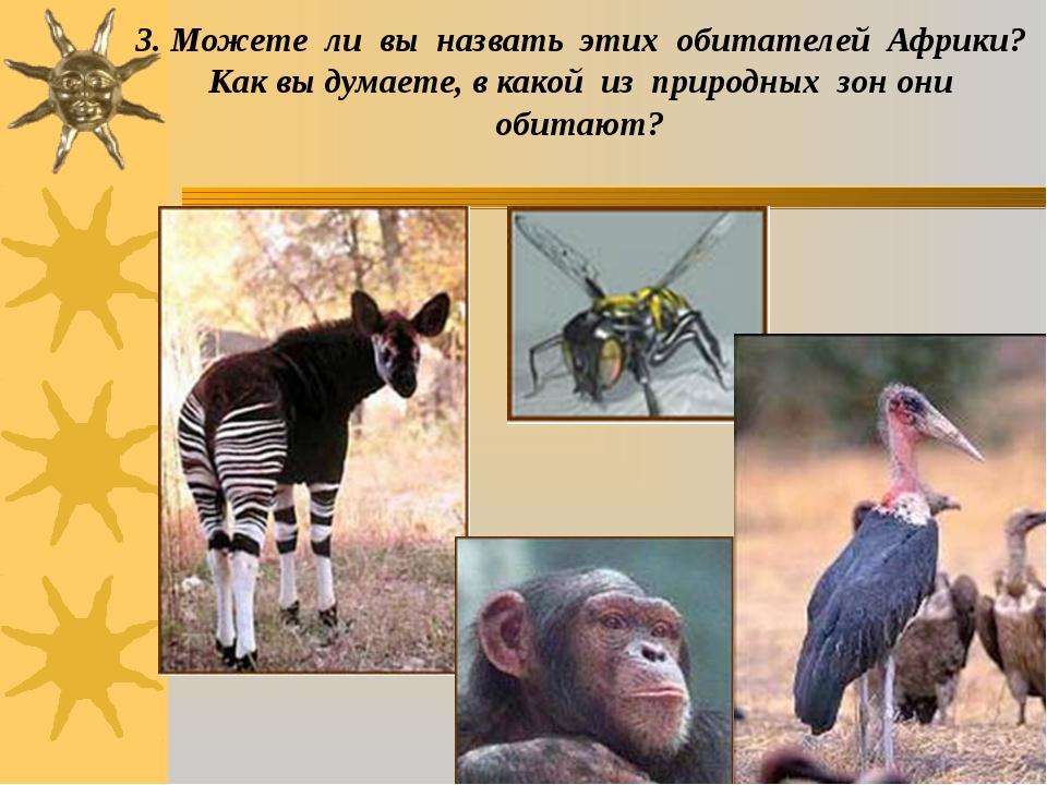 3. Можете ли вы назвать этих обитателей Африки? Как вы думаете, в какой из пр...