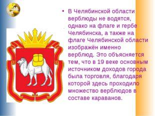 В Челябинской области верблюды не водятся, однако на флаге и гербе Челябинска