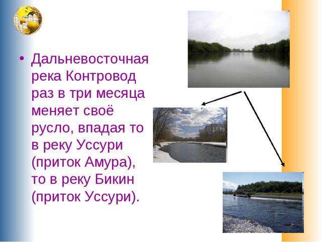Дальневосточная река Контровод раз в три месяца меняет своё русло, впадая то...