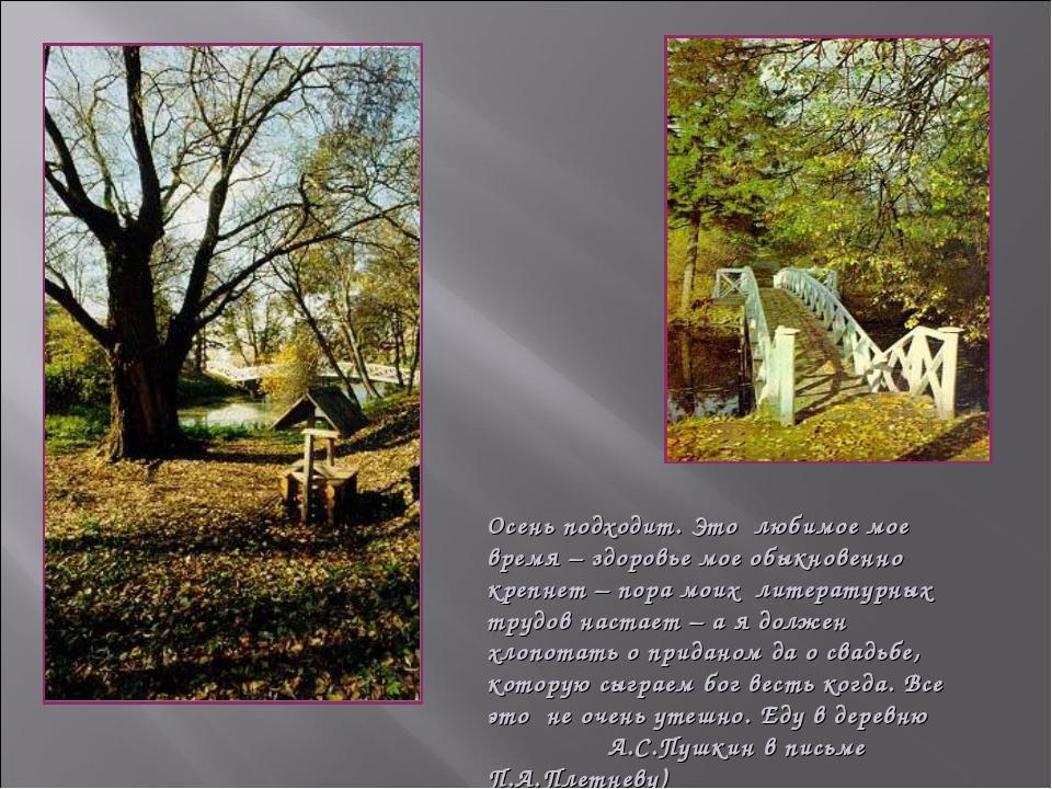 Осень подходит. Это любимое мое время – здоровье мое обыкновенно крепнет – по...