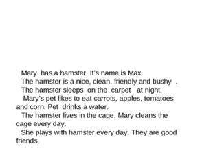 Mary has a hamster. It's name is Max. The hamster is a nice, clean, friendly