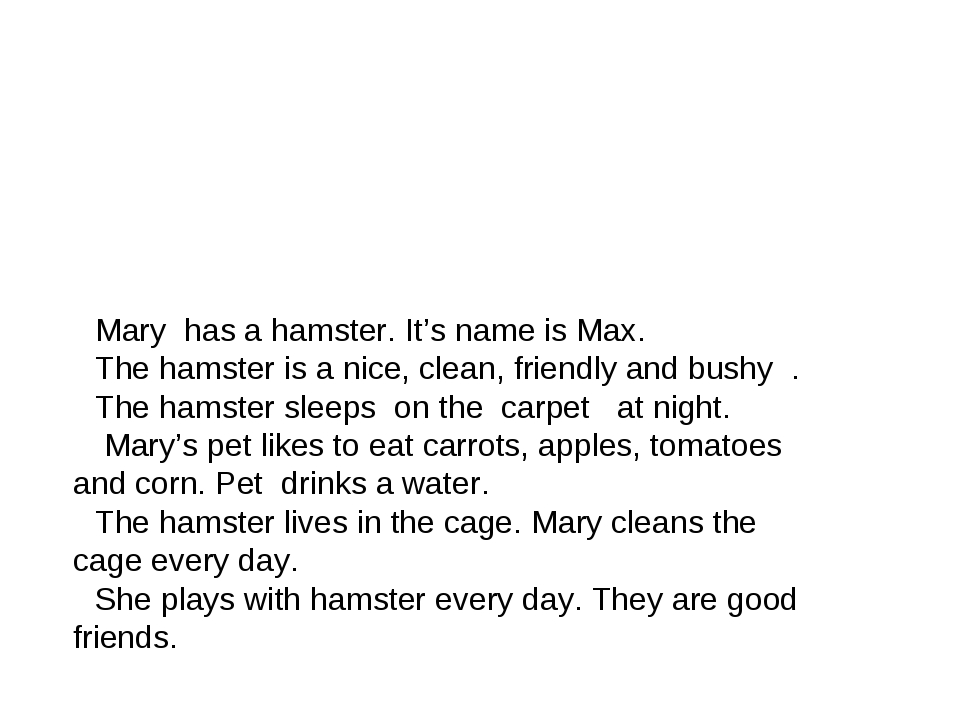 Mary has a hamster. It's name is Max. The hamster is a nice, clean, friendly...
