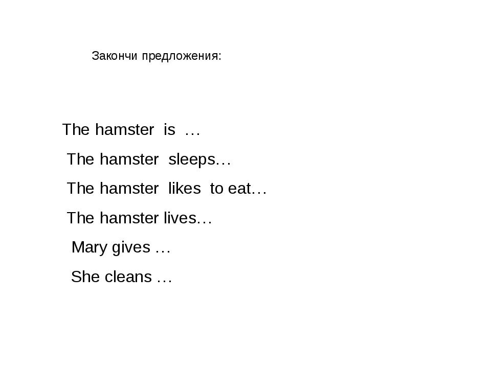 The hamster is … The hamster sleeps… The hamster likes to eat… The hamster li...
