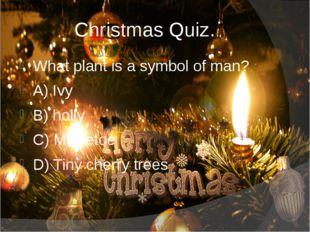 Christmas Quiz. What plant is a symbol of man? A) Ivy B) holly C) Mistletoe