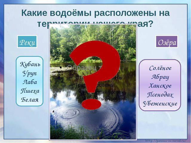 Какие водоёмы расположены на территории нашего края? Кубань Уруп Лаба Пшеха Б...