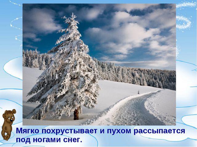 Мягко похрустывает и пухом рассыпается под ногами снег.