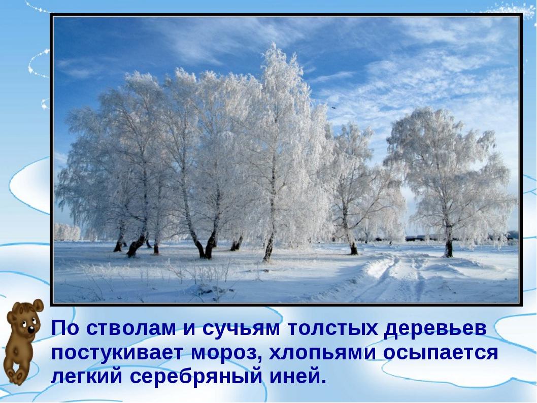 По стволам и сучьям толстых деревьев постукивает мороз, хлопьями осыпается ле...