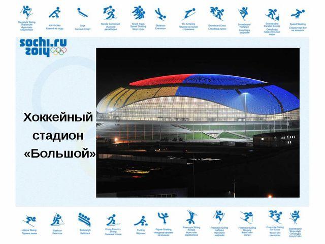 Хоккейный стадион «Большой» *