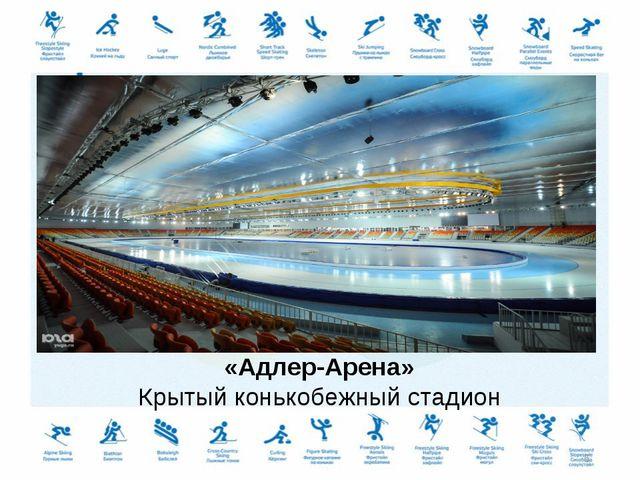 «Адлер-Арена» Крытый конькобежный стадион *