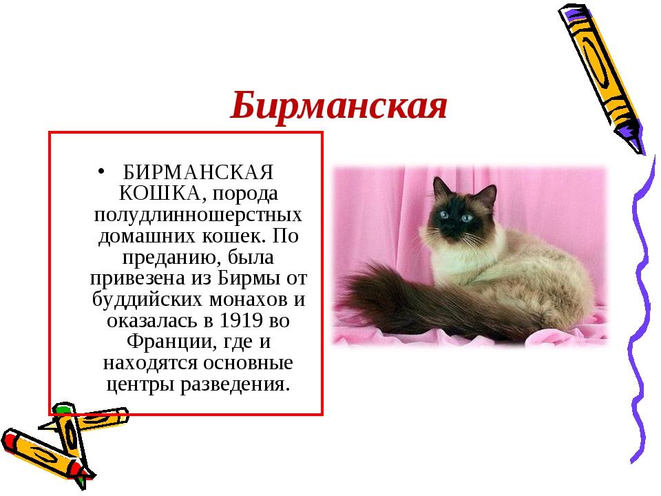 Бирманская БИРМАНСКАЯ КОШКА, порода полудлинношерстных домашних кошек. По пре...