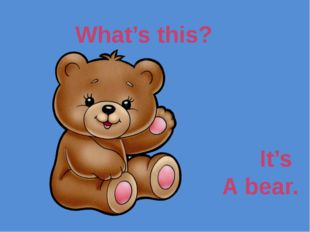 What's this? It's A bear.