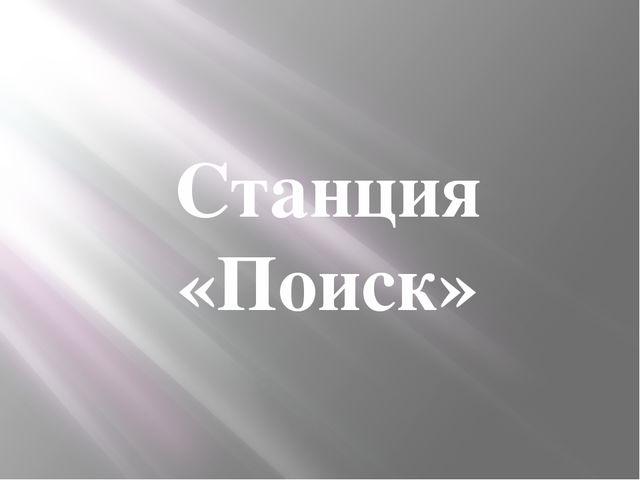 Станция «Поиск»