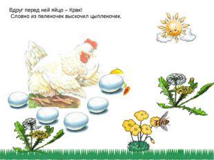 Вдруг перед ней яйцо – Крак! Словно из пеленочек выскочил цыпленочек.