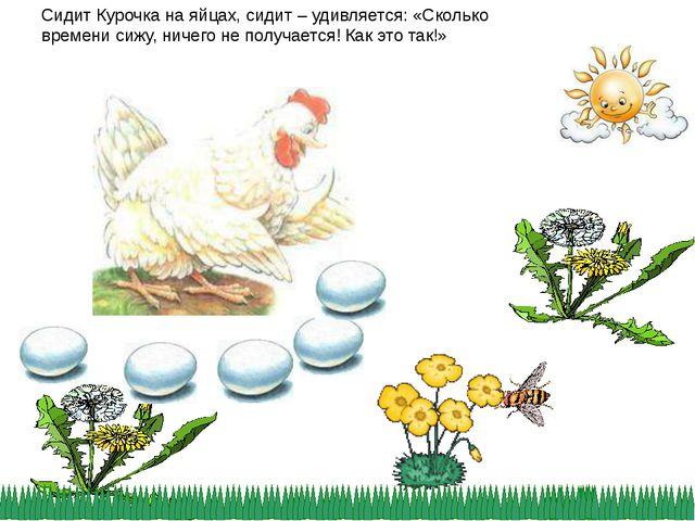 Сидит Курочка на яйцах, сидит – удивляется: «Сколько времени сижу, ничего не...
