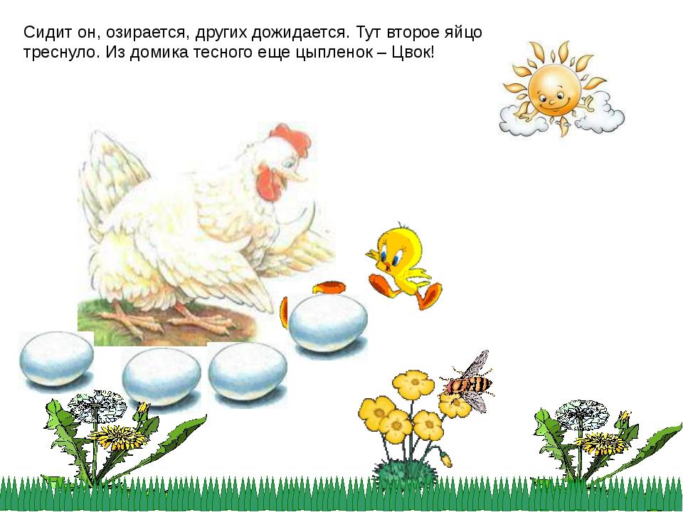 Сидит он, озирается, других дожидается. Тут второе яйцо треснуло. Из домика т...