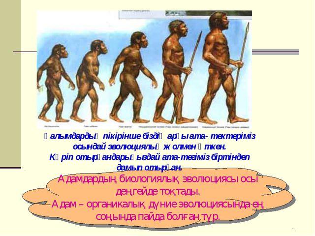 Ғалымдардың пікірінше біздің арғы ата- тектеріміз осындай эволюциялық жолмен...