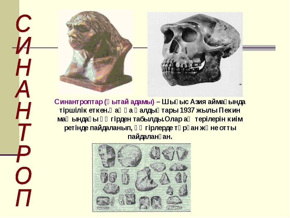 Синантроптар (қытай адамы) – Шығыс Азия аймағында тіршілік еткен.Қаңқа қалдық...