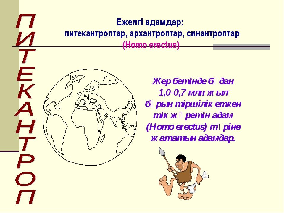 Жер бетінде бұдан 1,0-0,7 млн жыл бұрын тіршілік еткен тік жүретін адам (Homo...