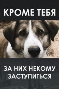 http://samaratoday.ru/img/2012/02/a_4312e50e-1.jpg