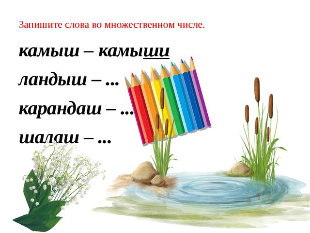 Запишите слова во множественном числе. камыш – камыши ландыш – ... карандаш –...