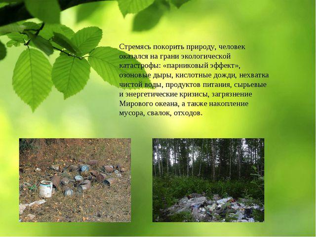 Стремясь покорить природу, человек оказался на грани экологической катастрофы...