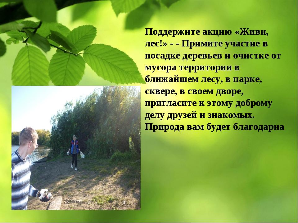 Поддержите акцию «Живи, лес!» - - Примите участие в посадке деревьев и очистк...